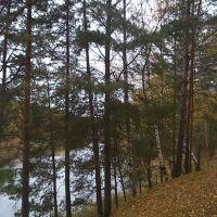 Уж осень настала..., Фосфоритный
