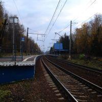 Платформа Абрамцево. Вид на Москву / Abramtsevo. View to Moscow, Хотьково