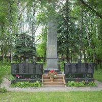 Памятник, Черкизово