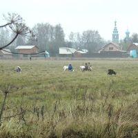 храм в Тарасовке, Черкизово