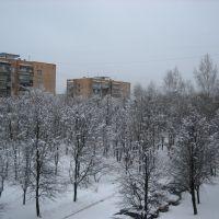 Snow, Черноголовка