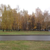 ул. Юбилейная, Черноголовка