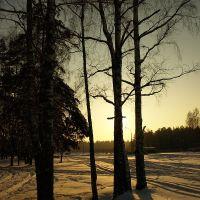 Зимним днем, Черноголовка