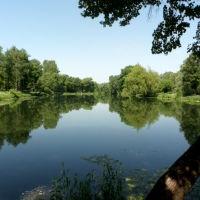 усадьба Лопасня-Зачатьевское, Чехов