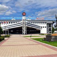 Ледовый хоккейный центр Витязь, Чехов