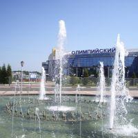 "Дворец спорта ""Олимпийский"" в г. Чехов, Чехов"