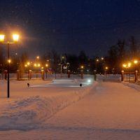 зима 2013, Чехов