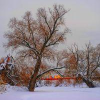 Прогулка по зимней Лопасне, Чехов