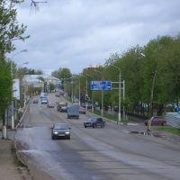 вид от моста, Чехов