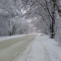 Shatura near GRES, Шатура
