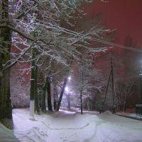 Зима в ночном городе, Шатура