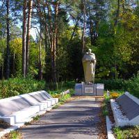 Памятник героям В.О.В., Шатурторф