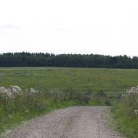 Замошская гора, Шаховская