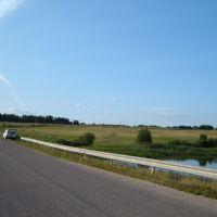 Мост в Щемелинках, Шаховская