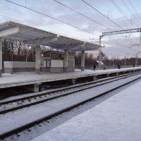 Платформа Шереметьевская, Шереметьевский