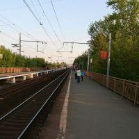 Khlebnikovo Station, Шереметьевский