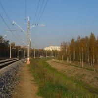 Ветка на Шереметьево, вид со стороны аэропорта, Шереметьевский