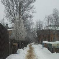 Хлебниково, Шереметьевский