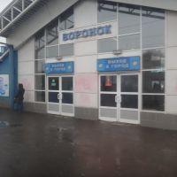 Станция Воронок, Щелково