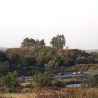 Щербинское городище, Щербинка