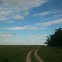 ::В поле вдоль леса::, Щербинка