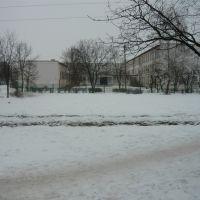 школа №16, Электрогорск
