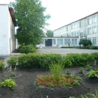 Милая школа, Электрогорск