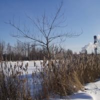 Warm Lakes, Электрогорск