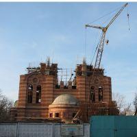 Строительство храма, Электросталь