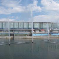 Ледовый дворец, Электросталь