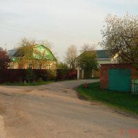 д. Исаково, вид на развилку ул. Красная - Слобода, Электроугли