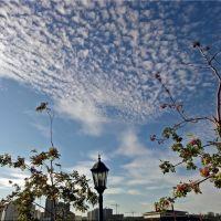 Небесные перья / Heavenly feathers, Байконур