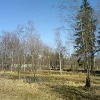 Весна в ГИЦИУ КС, Краснознаменск