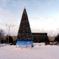 christmas tree, Апатиты