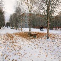 Ранний снег или запоздалый листопад., Апатиты