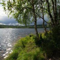 У озера., Ковдор