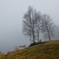 Ковдор, туман над озером., Ковдор
