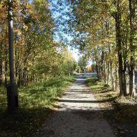 Осенняя аллея, Ковдор