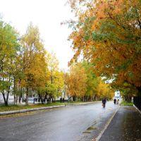 Советский проспект, Кола, Кола
