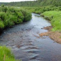 Kofta Creek, Конда