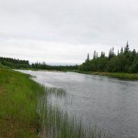 Losinga River, Конда