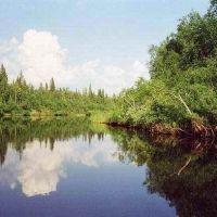 Река Стрельна в верхнем течении, Конда