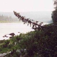 Река Стрельна, Конда
