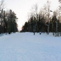 парк 10 февраля 2010, Мончегорск