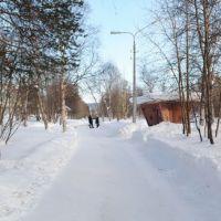 остановка первая школа, Мончегорск