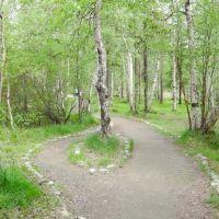 природа, Мончегорск