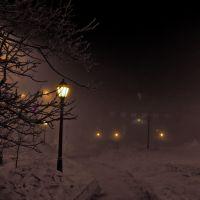 Сиреневый туман, Никель