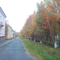 Золотая осень в Оленегорске., Оленегорск