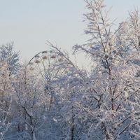 зима, Оленегорск