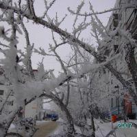 Зима, влажность 99 процентов, Снежногорск